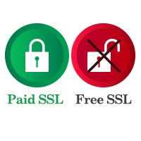 Free SSL vs Paid SSL Certificate – Which is Right for You?